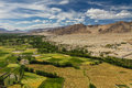 Himalayas from Thikse monastery-Ladakh,India Royalty Free Stock Photo