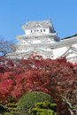 Himeji Castle with red leaves front view Royalty Free Stock Photo