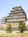 Himeji Castle with trees Royalty Free Stock Photo