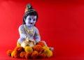 Hindu God Krishna Royalty Free Stock Photo
