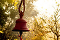 Hindu prayer bells in remote temple in forest Royalty Free Stock Photo