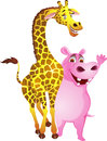 Hippo and giraffe Royalty Free Stock Images