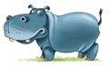 Hippopotamus africa nostrils cloven-hoofed mammal Royalty Free Stock Photo