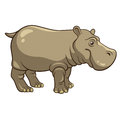 Hippopotamus cartoon isolated on a white background vector illustration Royalty Free Stock Photo