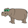 Hippopotamus isolated white background hand drawing cartoon hippo illustration Stock Images