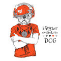Hipster dog dressed up in t-shirt, headphones, cap and with glasses. Vector illustration