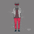 Hipster dressed dog up in jacket, pants and sweater. Vector illustration