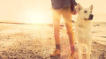Hipster girl playing with dog at a beach during sunset strong lens flare effect copy space Stock Photo