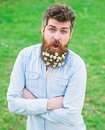 Hipster on happy surprised face stand on grass, defocused. Natural beauty concept. Guy looks nicely with daisy flowers Royalty Free Stock Photo