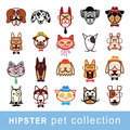 Hipster pet icon set. vector illustrations Royalty Free Stock Photo