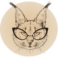Hipster portrait of bobcat with glasses Royalty Free Stock Photo