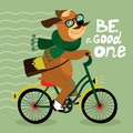 Hipster poster with nerd dog riding bike vector illustration Royalty Free Stock Photos