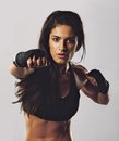 Hispanic female practicing boxing portrait of young sport girl training against grey background looking at camera Stock Photography