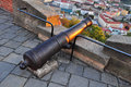 Historic canon weapon above brno fortification of spilberk Stock Images