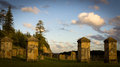 Historic cemetery norfolk island the on with graves dating back to the convict settlement and the migration of the pitcairn Royalty Free Stock Photography