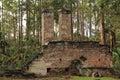 Dummett Plantation Ruins