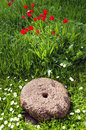 Historical millstone in the garden Royalty Free Stock Image