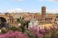 Historical rome the great beauty view from the roman forum on the city wonderful spring day Stock Images