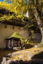Historical well under tree in old castle in Banska Stiavnica, Sl