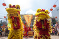 Ho Chi Minh, Vietnam - February 18, 2015 Lion dancing to celebrate Lunar New Year at Thien Hau Pagoda Royalty Free Stock Photo