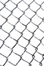 Hoarfrost on chain link fence white background Royalty Free Stock Photography