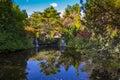 Hobart, botanical gardens Royalty Free Stock Photo