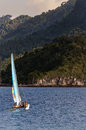 Hobie Cat Stock Images