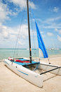 Hobie Catamaran on the Beach Stock Images