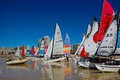 Hobie nationals south africa colourful sails line the shore at beach during the sas sailing held in port elizabeth from Royalty Free Stock Images