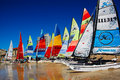 Hobie sas nationals port elizabeth colourful sails line the shore at beach during the sailing held in south africa from Royalty Free Stock Images