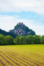 Hochosterwitz fortress in austria castle and rural agriculture fields front of it Royalty Free Stock Image