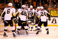 Hockey del nhl di pittsburgh penguins Fotografia Stock
