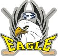 Hockey eagle coat of arms for the team with sticks and Royalty Free Stock Photos
