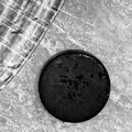 Hockey stick and puck on ice rink Royalty Free Stock Photography