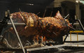 Hog roast on festival day a large being roasted under a fire during a sunny afternoon in aranda de duero spain Royalty Free Stock Images