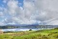 Hokianga Harbour Meadow Stock Image