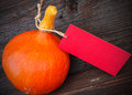 Hokkaido pumpkin with tag price Stock Photography