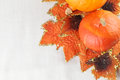 Hokkaido pumpkins with autumn leaves Royalty Free Stock Images