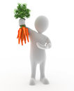 Holding carrots d character that is Royalty Free Stock Photography