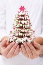 Holding gingerbread christmas tree Stock Photo
