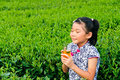 Holding green tea Asian children Royalty Free Stock Photography