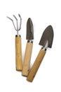 Holding little garden tools set Royalty Free Stock Photo