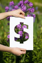 Holding papercut miniature dollar over blooming flowers Royalty Free Stock Photography