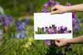 Holding papercut miniature residential houses over blooming flow flowers Stock Photo