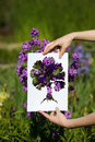 Holding papercut miniature tree over blooming flowers Stock Image