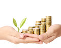 Holding plant sprouting from handful of coins a Royalty Free Stock Photo