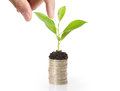 Holding plant sprouting from handful of coins a Royalty Free Stock Photos