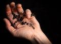 Holding rosary beads cross praying Royalty Free Stock Photos
