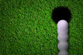 Hole in one shot Royalty Free Stock Photo