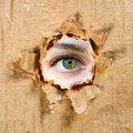 Hole in Paper And Eye Royalty Free Stock Photography